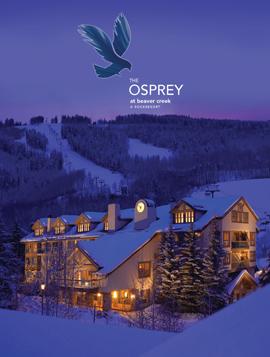 Osprey at Beaver Creek